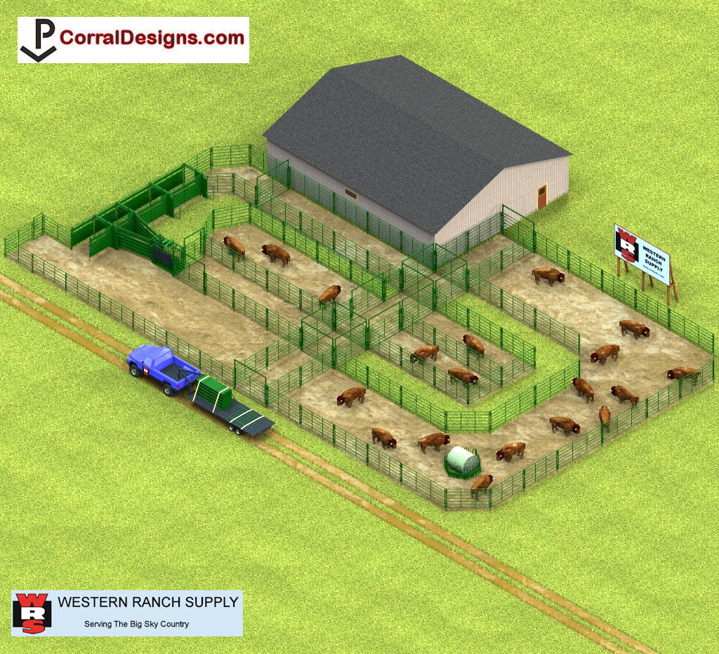 Corraldesigns Com Bison Handling Systems